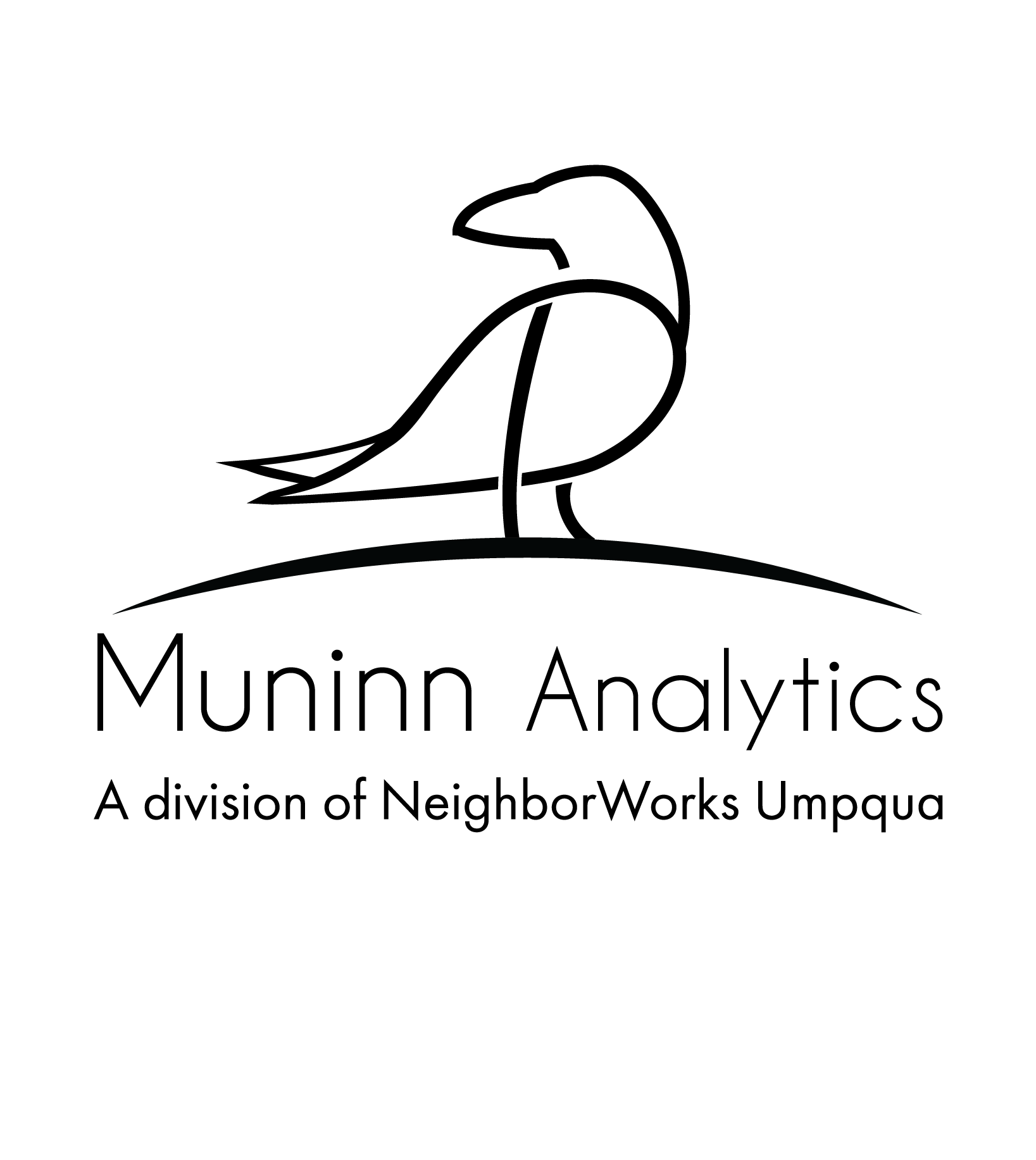 Muninn Analytics